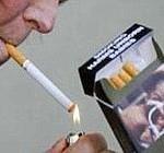 fumo--180x140